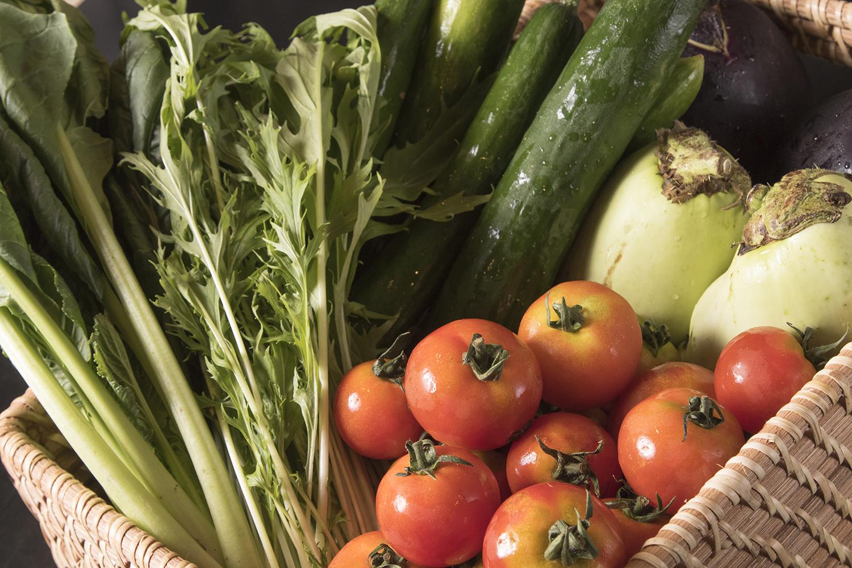 旬野菜 卸業 田舎生活